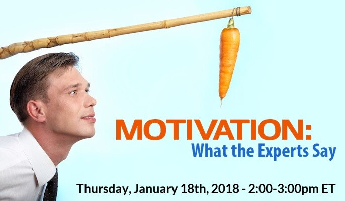 Motivation – What the Experts Say